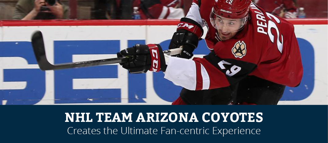 Tegrita aides Arizona Coyotes' Fan Experience