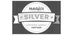 HubSpot Silver